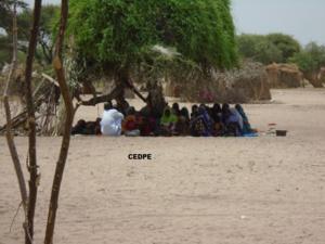 Le nombre de désengagés de Boko Haram pourrait atteindre 7000