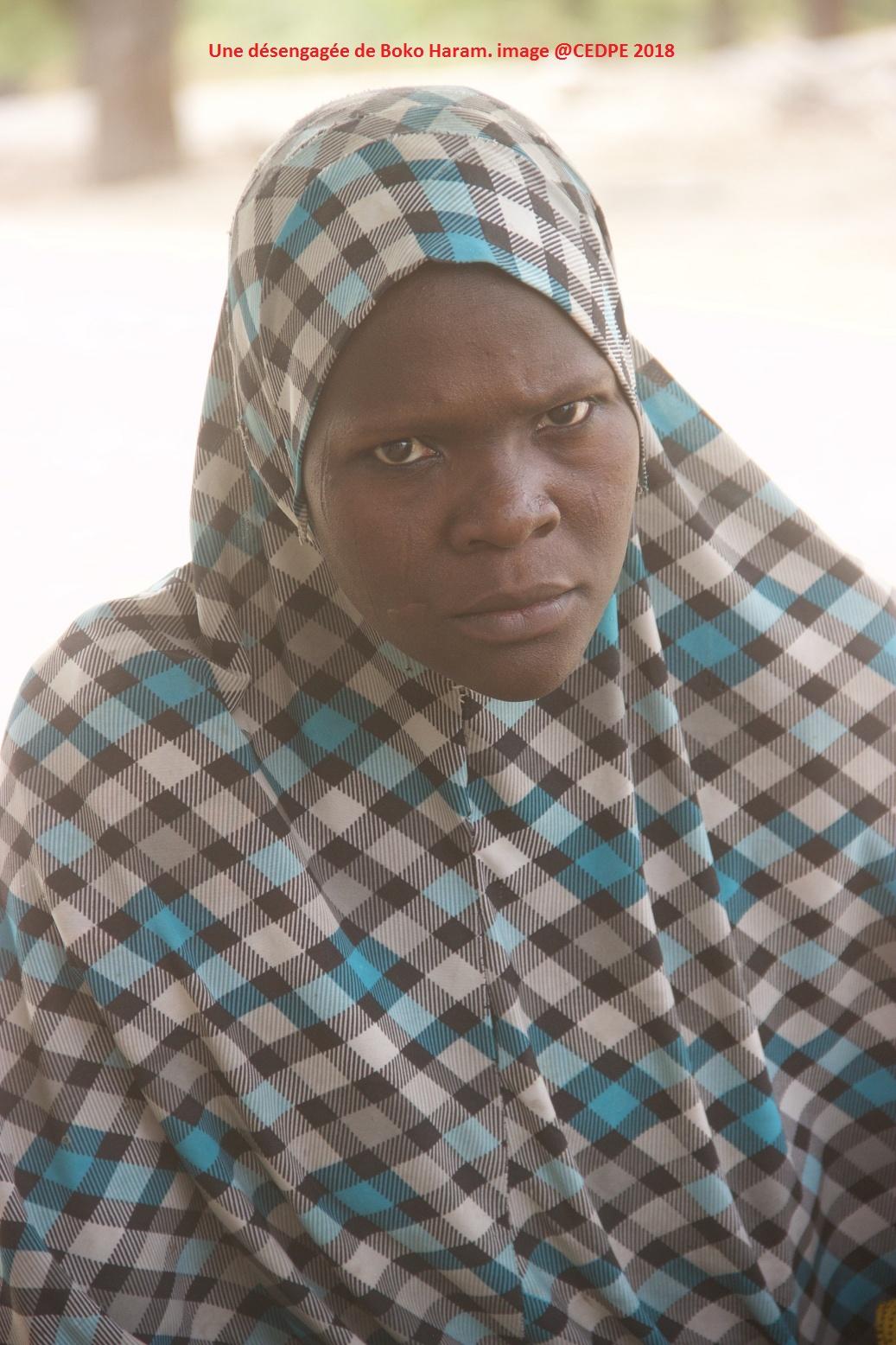 عدد المجندين في حركة بوكو حرام ١٤٥٢٠  في سنة ٢٠١٦، لينخفض الي ١٢٣٢٠ في ٢٠١٨، هذا يعني ان 2200 شخص قد عادو
