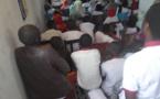 Tchad, la jeunesse du cedpe lance une campagne de sensibilisation