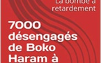 """7000 former Boko Haram combatants to be reintegrated"""