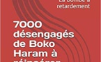 Terrorisme :   Les désengagés de Boko Haram, la bombe à retardement (Parution)
